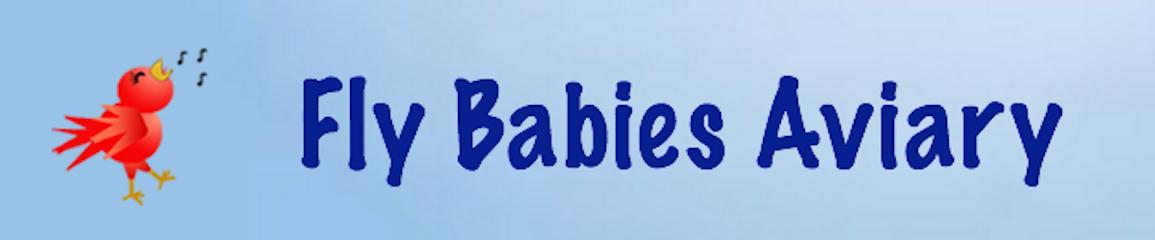 Fly Babies Aviary